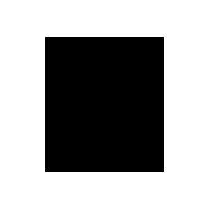 Piccola immagine centrata (dimensione dell'immagine: 40x46 px max)